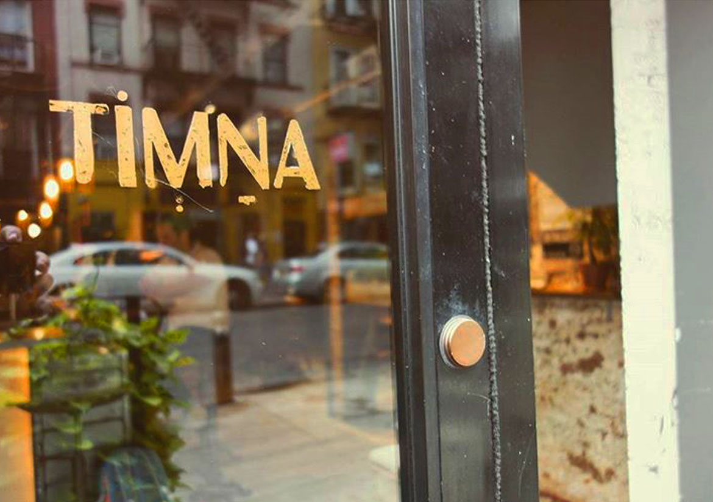 TimnaNYC_Branding_LogoDesign